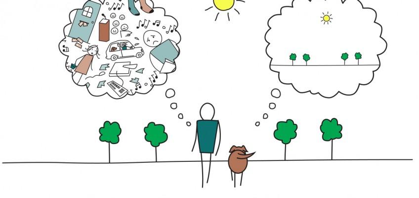 5 Steps to Mindfulness